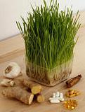 beneficiile-herbalife