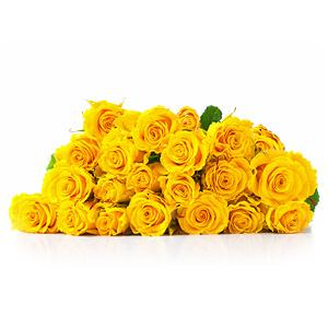 buchet-din-25-de-trandafiri-galbeni-g1ugV