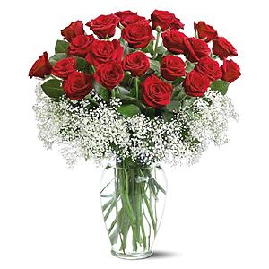 buchet-din-25-de-trandafiri-rosii-46UlU