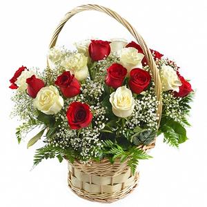 cos-cu-15-trandafiri-rosii-si-albi-FYyLY