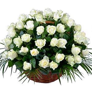 cos-cu-45-de-trandafiri-albi-8aaHP